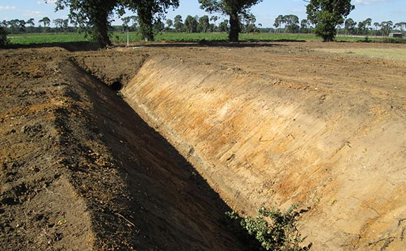 Ditching Services, Suffolk, Essex, Miles Drainage